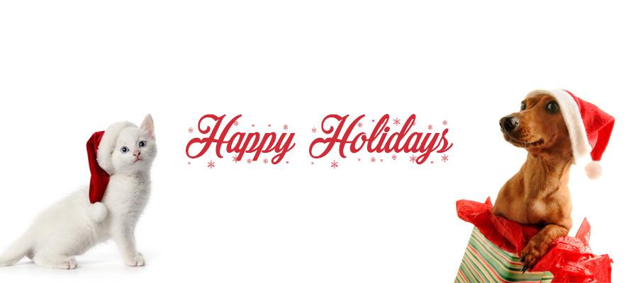 Blog-Holidays